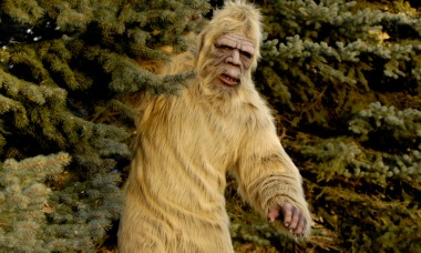 the-untold-truth-of-finding-bigfoot