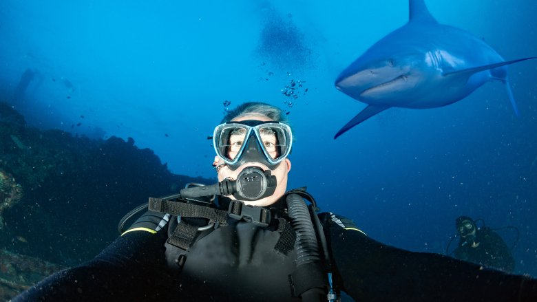 Selfie with shark