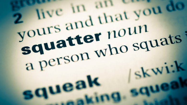 dictionary squatter