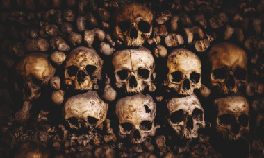 most-likely-ways-human-race-end-science-skulls